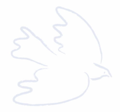 The Dove Logo - white